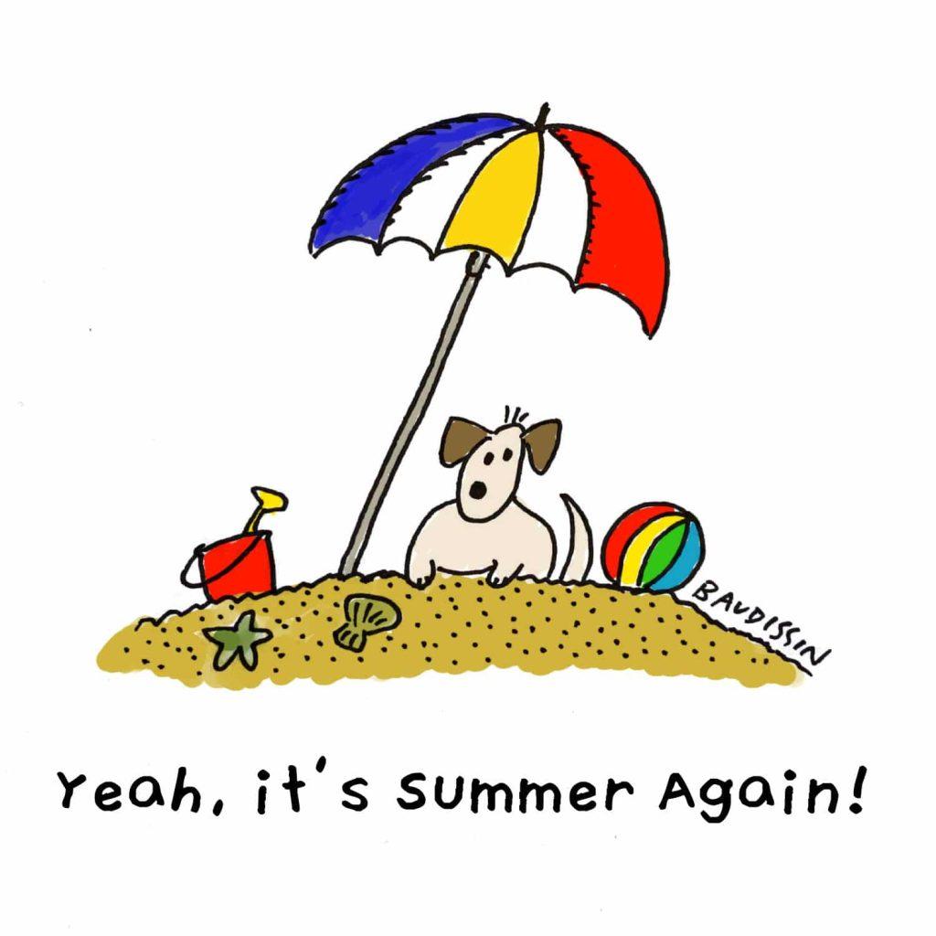 Yeah, it's summer again!