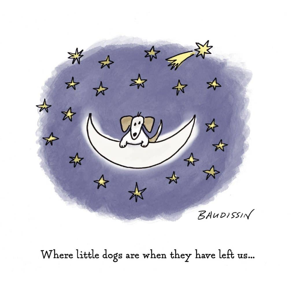 Little Moondog